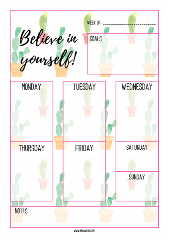 weekly planner for bloggers in pink cactus design